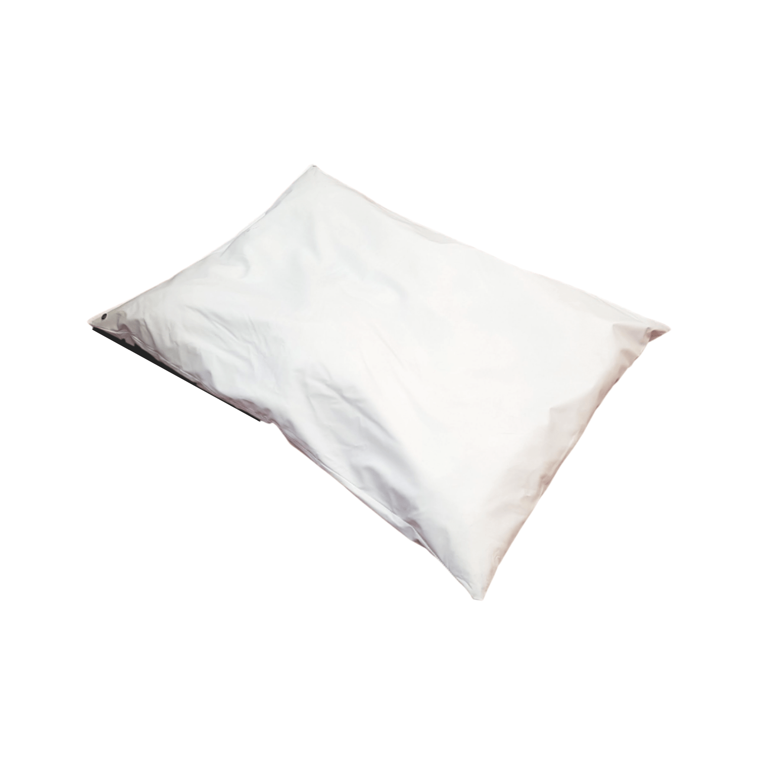 iCare Pillow Protector
